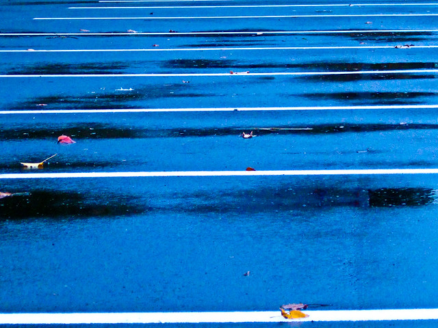 Parking lot and white lines with autumn leaves