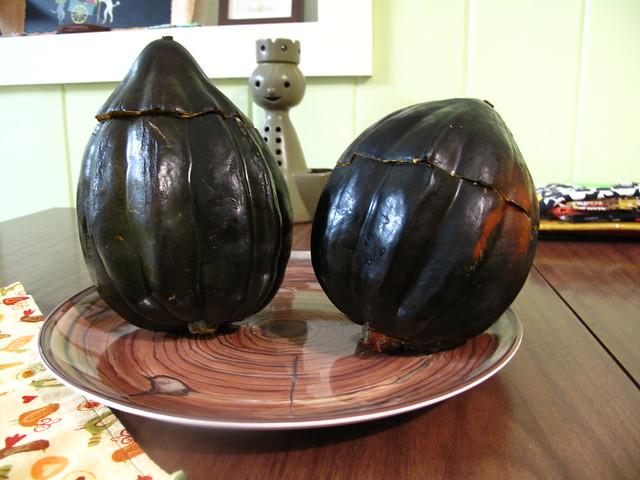Acorn squash.