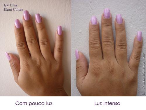 Ipê Lilás - Blant Colors