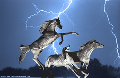 Lightning At Horse World BW Color Print