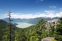 Howe Sound, Vancouver. (gavsidey) Tags: canada 150 sea sky howe sound landscapes travel rope bridge