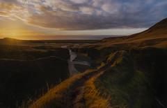 Fjaðrárgljúfur Canyon (Toni_pb) Tags: islandia iceland ilce7rii ilce7rm2 ilce7rmii a7rii alpha sony sunset minimalist mountain mystic mistico canyon fjadrargljufur warm wild golden