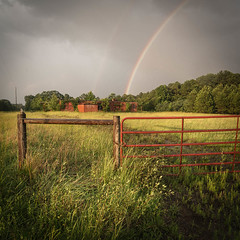 Old School & Rainbow (DancingTerrapin) Tags: rainbow doublerainbow old school oldschool gates gate field rural country overgrown cloudy overcast grass morgan county georgia ga nikon nikond610 rainbows