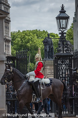 Horse Guard (Philip Pound Photography) Tags: changingtheguard householdcavalry britisharmy britishsoldiers queenshouseholdcavalry horseguardsparade london soldiers uniform pomp ceremony pageantry