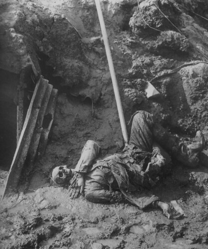 rats in trenches. Corpse eaten by rats,