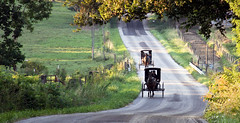 Country-Drive II (miche11) Tags: summer horses horse rural country amish countrydrive