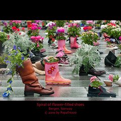 Spiral of flower-filled shoes (Papafrezzo,  2007-2012 by www.papafrezzo.com) Tags: flowers flower sinterklaas norway spiral shoes bergen schoen noorwegen festplassen littlestories greenbeltmovement picswithsoul flowerspiral blomsterspiralen