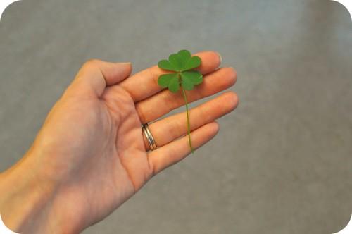 a little good luck.