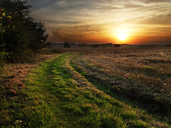 Walk to the sun set (Billy Clapham) Tags: sky sun film nature public grass set clouds landscape foot fuji village path wildlife side country lincolnshire finepix b