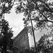 Flat Iron Building - Lili Aviles