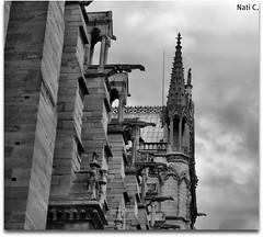Detalle arquitectnico de Notre Dame (Nati C.) Tags: bn notredame hdr pars cruzadas detallearquitectnico