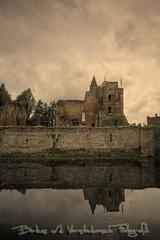Ruine van Brederode (Bertus van de Vorstenbosch Photography) Tags: old holland canon eos decay sigma ruine 5d middleages 1224mm oud hdr castel kasteel ruines brederode santpoort vervallen
