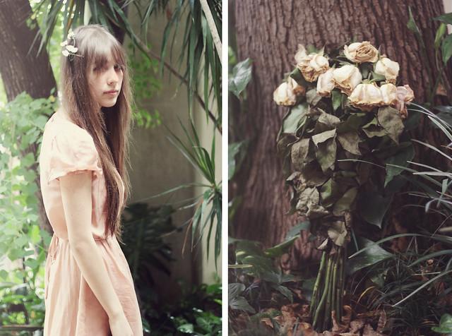 Dead flowers [Explore]