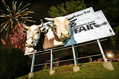 minnesota state fair (Dan Anderson.) Tags: park minnesota sign advertising amusement 3d cows state fireworks statefair stpaul minneapolis fair billboard advertisement twincities saintpaul minnesotastatefair deepfried mnstatefair