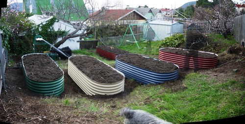 Garden Beds In Place