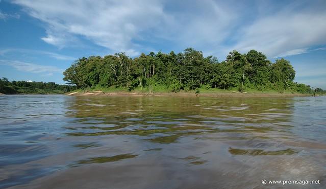 Kinabatangan river valley