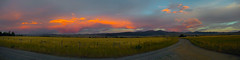 PATH:X (Dr. RawheaD) Tags: road sky panorama orange grass clouds sunrise canon fence eos path olympus 5d f2 zuiko mkii fiels 21mm ptgui autow