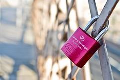 Fatma loves Dominique (Vaibhav Gadodia) Tags: pink newyork love bokeh lock brooklynbridge dominique fatma lovelocks