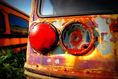 back to school. again. (artsy_T) Tags: school light ontario canada bus rust junkyard rockwood mcleans