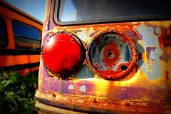 back to school. again. (artsy_T) Tags: school light ontario canada bus rust junkyard rockwood mcleans