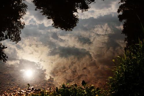Calmes reflets