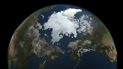 A Snapshot of Sea Ice