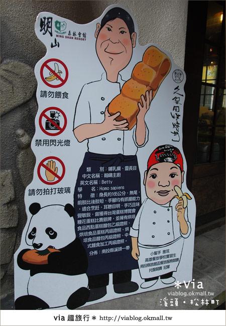 【南投】台灣,妖怪出沒?!來溪頭妖怪村-松林町抓妖吧!28