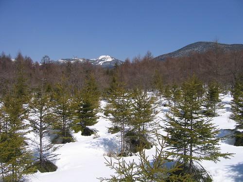 八方台登山道から見た茶臼山 by Poran111