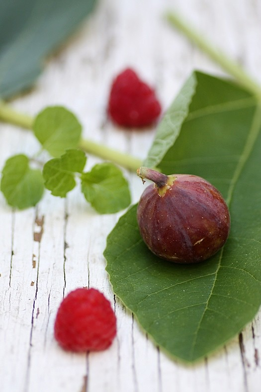 Fig and Raspberries