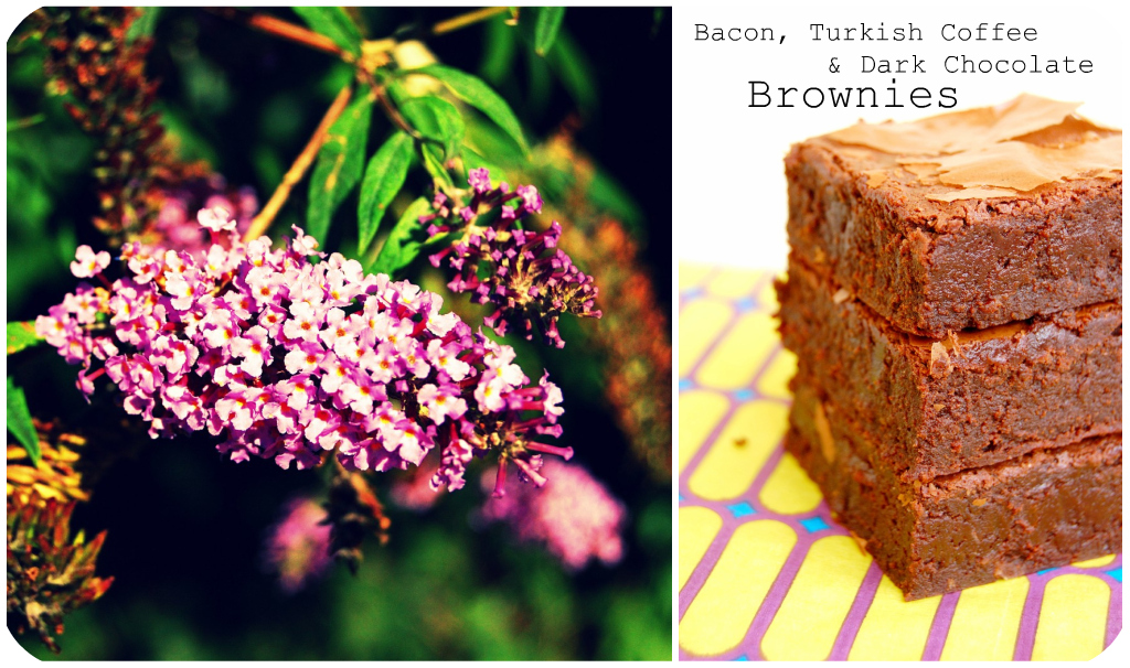 Bacon Brownies Picnik collage 4 bis