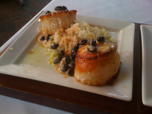 Scallops, Flight, Memphis, Tenn.