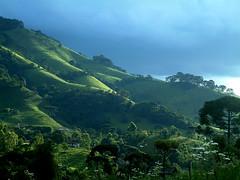 ros.rio (...anna christina...) Tags: brazil minasgerais nature brasil natureza wonderland serradamantiqueira mataatlntica annachristina annachristinaoliveira