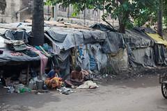 Bidonville (hubertguyon) Tags: poor misery calcutta inde pauvre kolkota misre bengaleoccidental