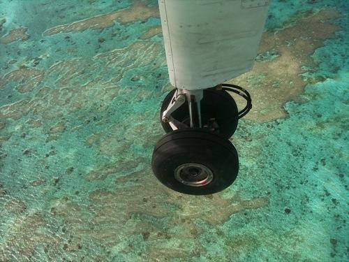 粟国島~那覇行きの飛行機から見た珊瑚