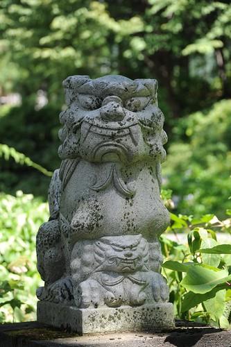 酢川神社の狛犬