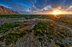 Sunset and low tide near Cap Blanc Nez / Sangatte / Cote d'Opale