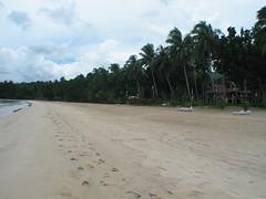 daluyon beach in palawan