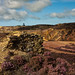 Ruin View 2