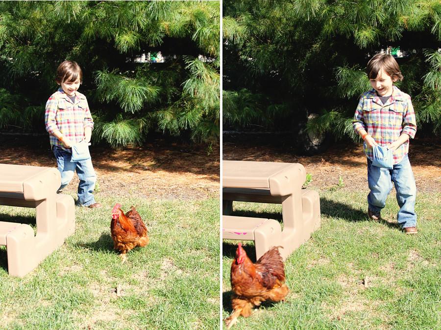 Rader farm 2010 (60)blog