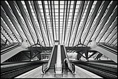 liège-guillemins (heavenuphere) Tags: roof bw lines station architecture modern train vanishingpoint construction belgium escalator railway symmetry calatrava 1022mm luik santiagocalatrava liège wallonia guillemins liègeguillemins