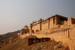 View on the Amber Fort, near Jaipur, Rajasthan, India (fabriziogiordano23) Tags: trip travel red india holiday elephant rose amber asia fort journey indie 1001nights viaggio jaipur vacanza forte indland maharajah  wow1 elefanti      flickraward  flickrestrellas  flickraward5