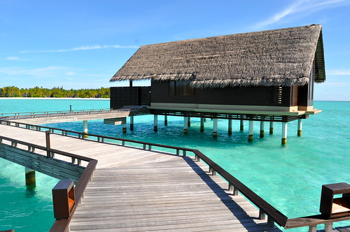 Maldives flickr photo