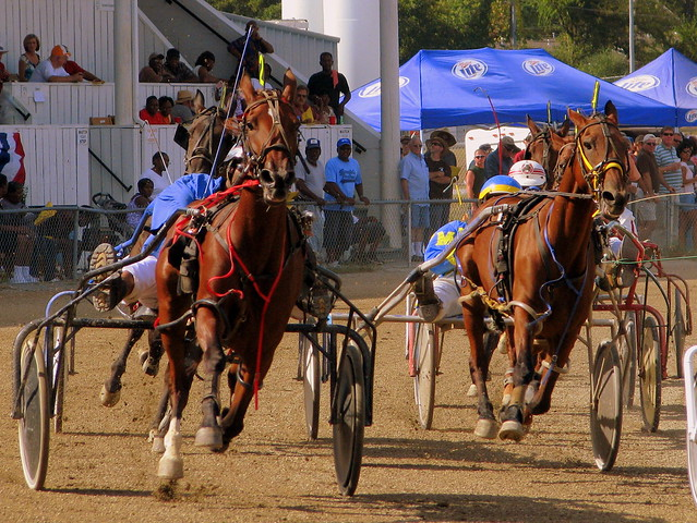 2010 Lincoln Co. Fair Harness Racing