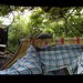 Cotswolds Yurt - The Hammock