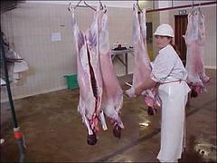 43tz (schlachter1234) Tags: schlachten metzgerin gummischürze schlachterin