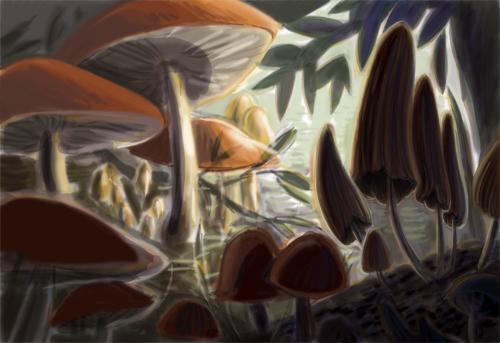 Mushroomcolorstud-10.5.10_brgb