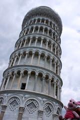 Ferkel richtet den schiefen Turm von Pisa
