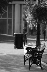 Pathway (desbah) Tags: bw gardens bench washingtondc smithsonian ironwork 101010