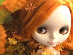 Charlie in Autumn