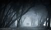 The Ghost Walkers (Harvarinder Singh) Tags: night scary walk ghosts ghostwalkers scarynights harvarindersinghphotography harvarindersingh ghostlywalk flickrghosts